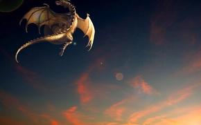 Картинка закат, фентези, дракон, полёт