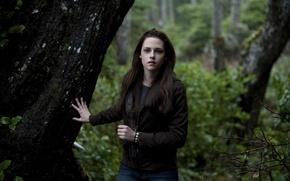 Картинка кино, актриса, сумерки, Kristen Stewart, лес