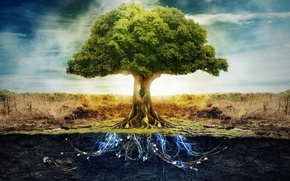 Картинка Life, Art, sky, Tree, blue, land, energy, amazing, cable, Abstaction