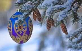 Картинка снег, игрушка, елка, Новый Год, Рождество, украшение, шишки
