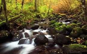 Картинка осень, природа, река, камни, листва, потоки