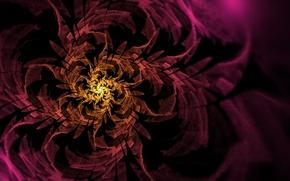 Картинка цветок, желтый, розовый, узор, спираль, арт