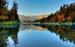 Картинка лес, отражения, горы, озеро, Новая Зеландия, Южный остров, Национальный парк Вестленд, Ледник Фокса, Lake Matheson