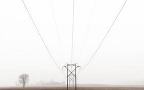 Обои field, farm, foggy, power line