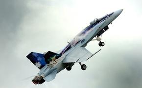 Картинка истребитель, многоцелевой, Hornet, перехватчик, CF-18