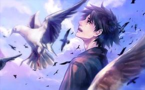 Обои арт, tamachi kuwa, аниме, fate stay night, fate zero