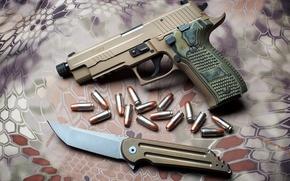 Картинка Sig Sauer, Hoback Kwaiback, P226 Suppressor-Ready Scorpion