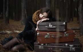 Картинка лес, осень, одиночество, девушка, чемоданы, вечер, брюнетка, деревья, ситуация, пальто, багаж