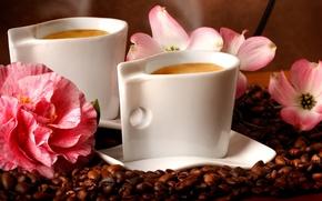 Картинка цветы, кофе, кофейные зерна, flowers, аромат, coffee, aroma coffee beans
