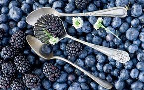 Обои ягоды, много, Anna Verdina, ложки, ежевика, черника