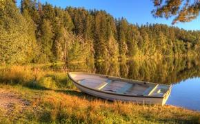 Картинка осень, лес, озеро, лодка, утро, ранняя