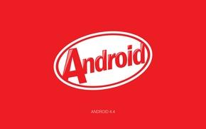 Картинка обои, Android, kitkat, Android 4.4