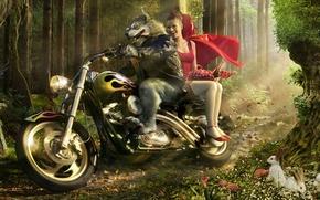 Обои волк, мотоцикл, красная шапочка