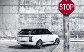 Картинка белый, white, вид сзади, land rover, range rover, ренж ровер, ленд ровер, чёрная крыша, знак …