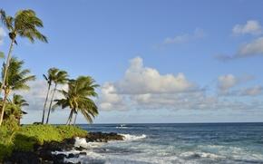 Обои море, пальмы, пейзаж, небо, берег, тропики, облака