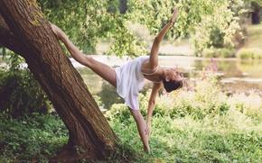 Обои дерево, Dancing in the nature, танец, девушка