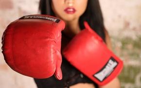 Картинка спорт, бокс, перчатки