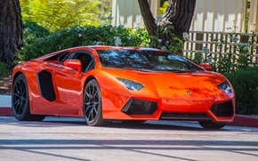Картинка lamborghini, orange, aventador, lp700-4