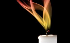 Обои пламя, свеча, огонь