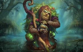 Картинка болото, посох, ведьма, жаба, Bog Witch Emilia, Juggernaut Wars