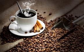 Картинка кофе, горячий, зерна, ложка, чашка, напиток, корица, блюдце, лопатка