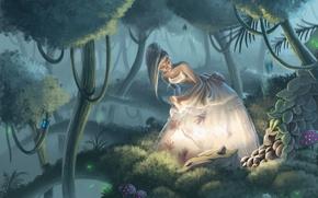 Картинка лес, вода, девушка, свет, деревья, бабочки, отражение, камни, грибы, арт, белое платье, ладони