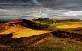 Картинка небо, холмы, овцы, англия, британия