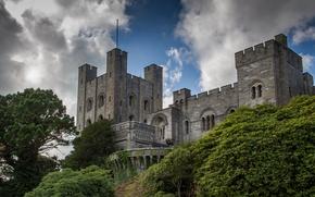 Картинка Англия, кусты, England, Gwynedd, Замок Пенрин, Северный Уэльс, Penrhyn Castle, Бангор, Bangor, North Wales