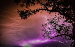 Картинка небо, облака, ночь, дерево, молния, силуэт