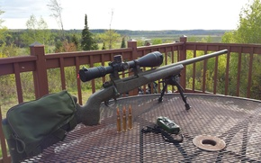 Картинка оружие, снайперская винтовка, T-76