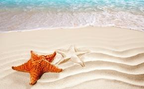 Картинка песок, море, пляж, силуэт, прибой, морская звезда