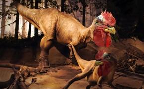 Картинка dinosaur, rooster rex, invented