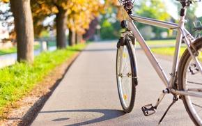 Картинка велосипед, город, парк, аллея