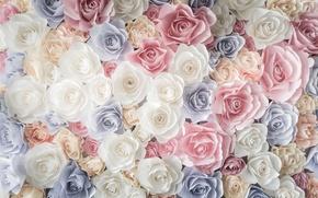 Обои бутоны, розы, roses, flowers