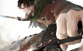 Картинка взгляд, аниме, арт, парень, вторжение гигантов, атака титанов, Shingeki no Kyojin, Леви