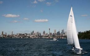 Картинка город, Австралия, Сидней, катера, телебашня, высотки, Australia, Sydney, берегу, курсируют, парусник., акватории