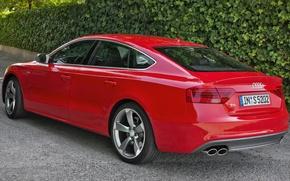 Картинка Audi, Red, Back, Sportback, (2015), Weiv