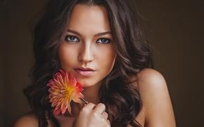 Картинка girl, eyes, brown, beautiful, babe