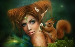 Картинка девушка, эльф, ромашки, фея, белка, рыжая, украшение, уши