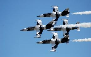Картинка небо, самолёты, L-39 Albatross