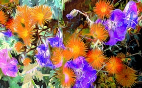 Картинка линии, цветы, краски, лепестки, штрихи, клумба