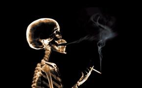Картинка сигарета, рентген, дым, Скелет