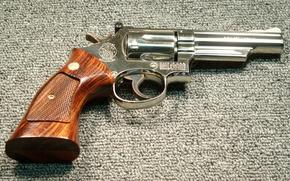 Картинка пистолет, оружие, SW19 Nickel