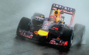 Картинка Гонщик, Japan, Formula 1, Rain, Sebastian Vettel, Чемпион