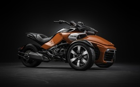 Картинка Roadster, Canada, Spyder, modern, power, beautiful, motorcycle, Can-Am, strong, desing, tourism, comfortable, BRP, tricycle, robust, …