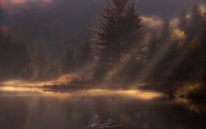 Картинка осень, лес, свет, природа, утро, дымка, водоем