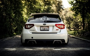 Картинка белый, Лес, Калифорния, subaru, wrx, impreza, sti, Subaru Impreza wrx sti
