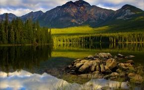 Картинка ель, горы, Jasper National Park, отражение, деревья, Canada, озеро, лес, облака, небо, камни, закат