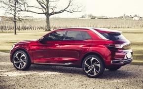 Картинка Concept, Citroën, концепт, вид сзади, Сетроен, Wild Rubis