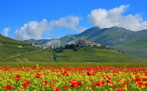 Картинка поле, цветы, горы, маки, дома, луг, Италия, поселок, Кастеллуччо ди Норча